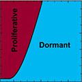 2014_10_31_Phase-diagram_Torquato-120