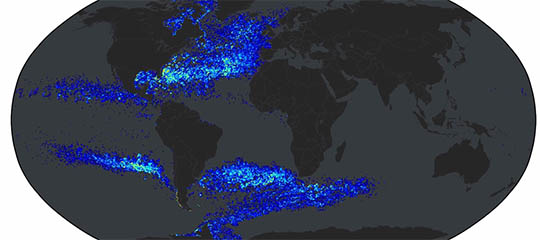 Phytoplankton spread around the globe in less than a decade